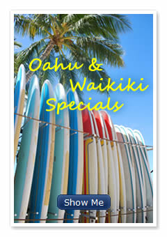 image of surfboards of various sizes on a rack oahu hawaii hotels - Oahu Hotels And Resorts