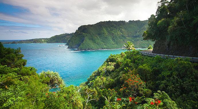 Maui: Wellness
